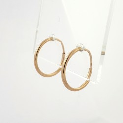 Auksiniai auskarai 0.65g